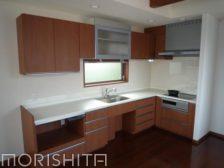 キッチンカウンター+吊戸棚